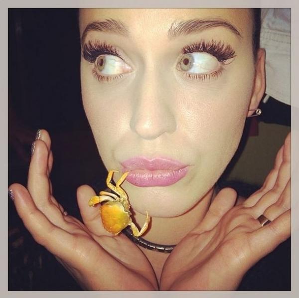 Katy Perry faz pose com caranguejo na boca