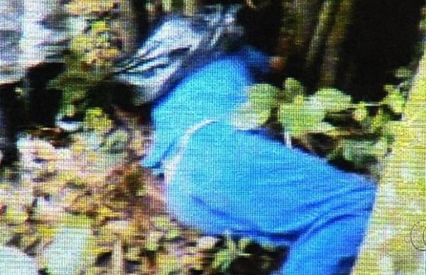 Motorista é encontrado encapuzado e amarrado em árvore