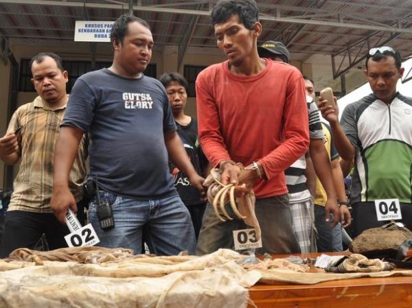 Indonésio saqueava túmulos com sonho de ser invisível e voar