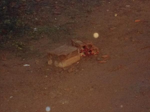 Homem é morto a tijoladas e tem cabeça esmagada por veículo horas após ser liberado da prisão