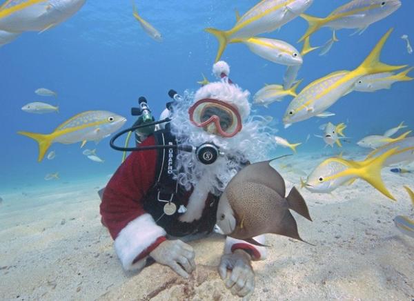Em mergulho, Papai Noel posa em meio a peixes nos EUA