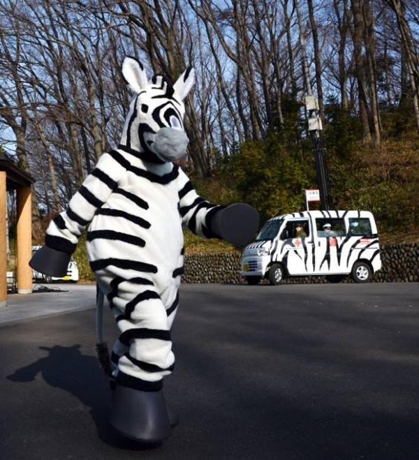 Funcionário se fantasia de zebra para simular fuga em zoológico japonês