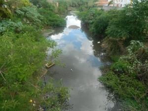 Lixo e mato tomam conta do rio Guaribas