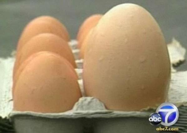 ovos gigantes, com rabo e até em formato do número 8