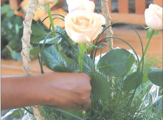 Dia Internacional da Mulher aquece venda de flores