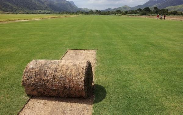 Pronto, gramado começará a ser levado sábado para o Maracanã