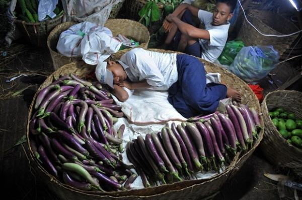 Homem tira soneca em cesto de vegetais em Mianmar