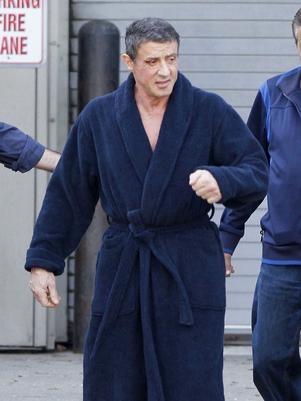 Cadela de Sylvester Stallone é morta após ataque de coiote