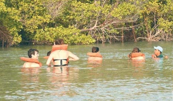 Incrível percorre hoje rota do Cavalo-Marinho nas praias de Barra Grande, no litoral do Piauí