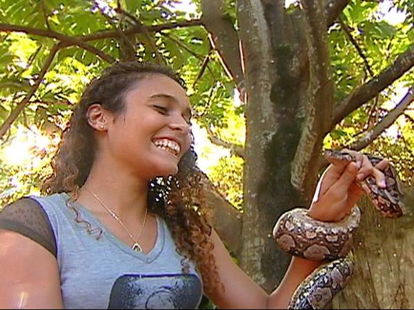 Jiboia é encontrada dentro de garagem de casa em Vitória