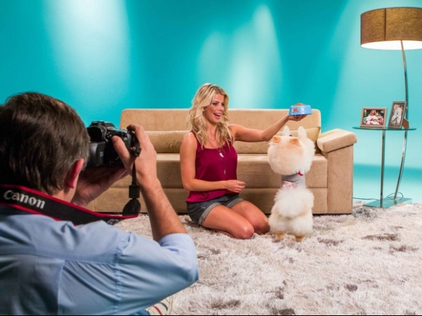 Sucesso no Instagram, cachorro de Karina Bacchi estrela campanha