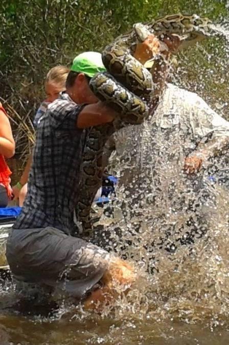 Guia turístico ganha luta contra cobra de três metros na Flórida