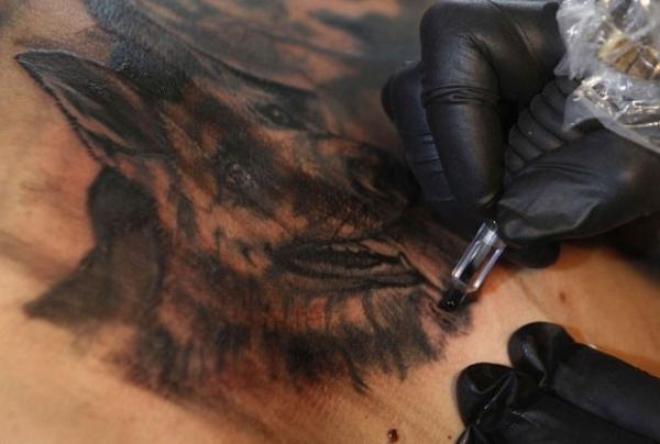 Donos tatuam imagem  dos animais de estimação  no próprio corpo;veja fotos
