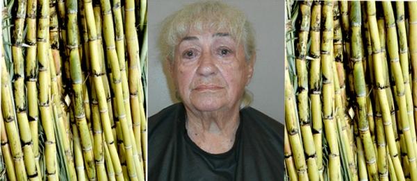 Idosa de 88 anos é presa por cutucar mulher gestante com cana-de-açúcar