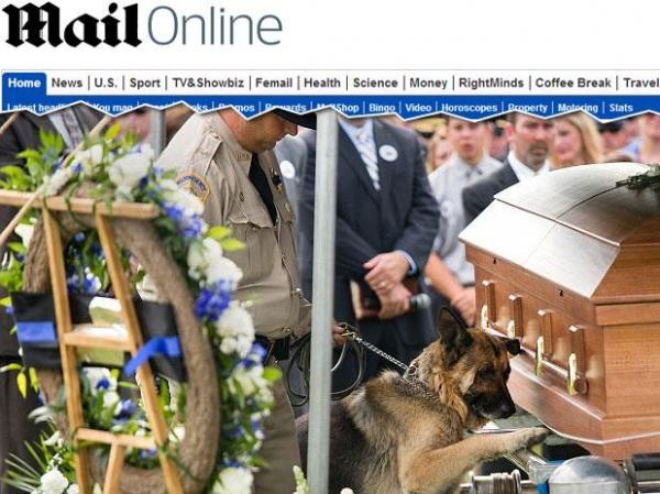 Cão policial emociona em enterro ao se