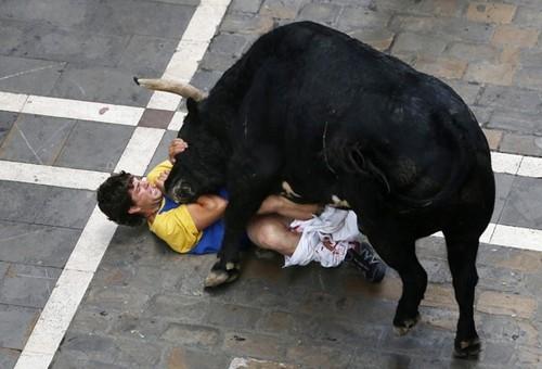 Foliões são chifrados por touros em Pamplona
