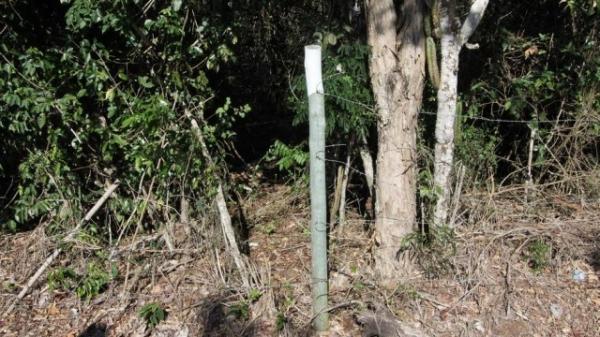 Estudante afirma que homem a levou para matagal em Búzios: ?Se alguém perguntar, diz que sou seu irmão?