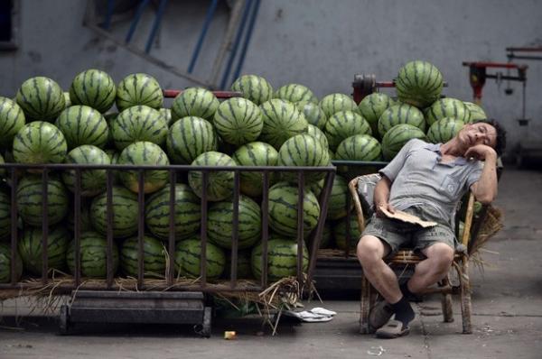 Vendedor de melancias é flagrado em