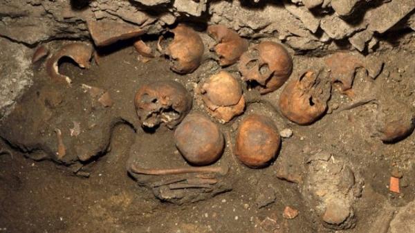 Austríaco é preso por roubar ossos para montar museu em casa