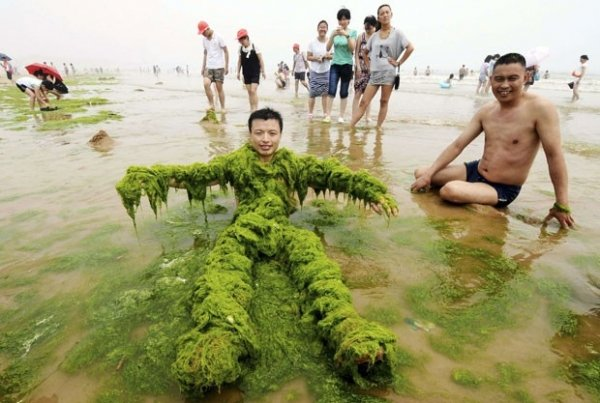 Homem cobre corpo com algas e exibe traje curioso em praia chinesa