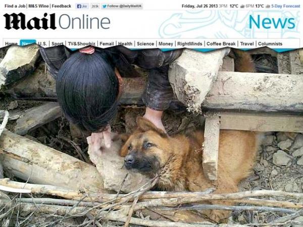Cachorro é resgatado 77 horas após terremoto na China