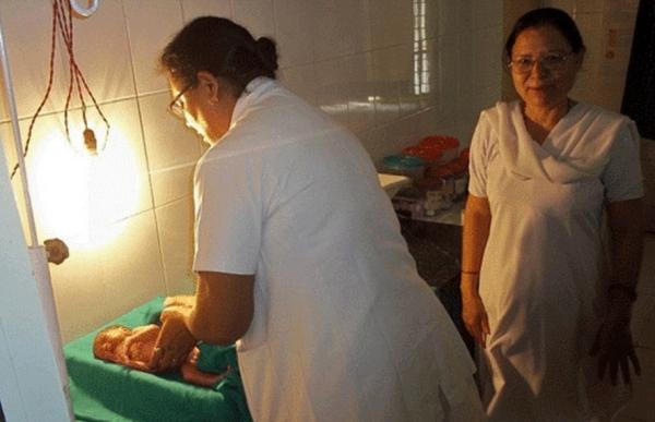 Bebê de um dia encontrada enterrada viva e morre no hospital em decorrência dos ferimentos
