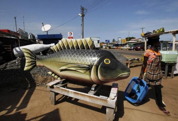 Empresa fabrica caixão no formato de peixe e outros modelos bizarros