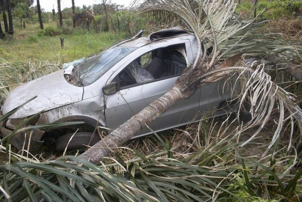 Motorista desvia de pedra e colide com palmeira em BR