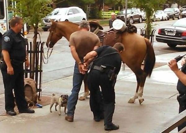 Homem é preso nos EUA ao ser flagrado andando bêbado a cavalo