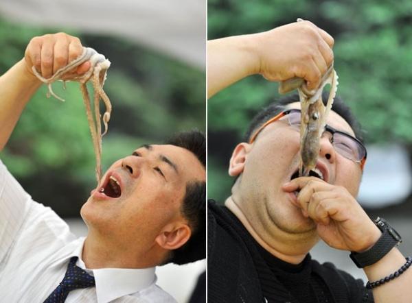 Sul-coreanos comem polvos vivos para promover festival gastronômico