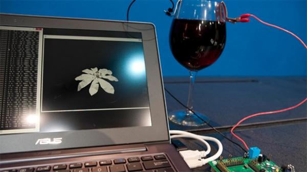 Intel desenvolve processador capaz de funcionar à base de vinho