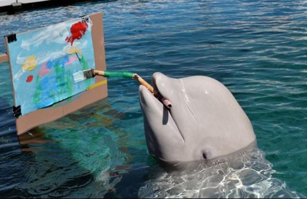 Baleia-branca usa pincel especial e pinta quadro em aquário japonês