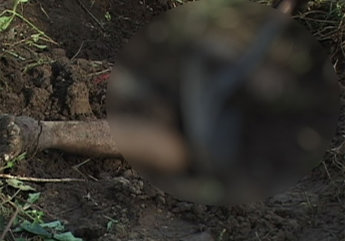 Adolescente pede prova de amor e faz namorado enterrar homem vivo na PB