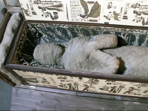 Esqueleto de múmia achada na Alemanha é de plástico; crânio é real