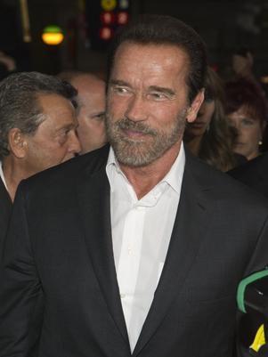 Demora no divcio de Schwarzenegger seria por divis縊 de bens
