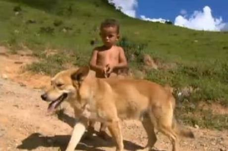 Cão salva dono de apenas 3 anos ao se perderem em mata