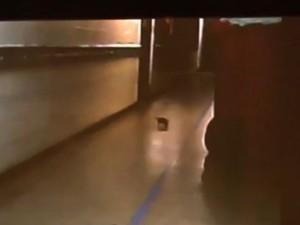 Funcionários filmam rato em corredor de maternidade pública de Alagoas