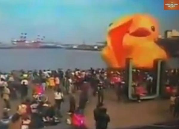 Ap ser consertado, pato infl疱el gigante volta a ser exibido em Taiwan