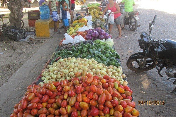 I Feira de Venda e Exposição da Agricultura Familiar - Imagem 17