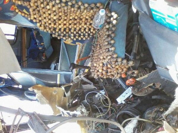 Grave acidente envolvendo dois ônibus na BR-020 - Imagem 9