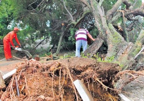 Chuvas fazem aumentar número de buracos pelas ruas de Teresina