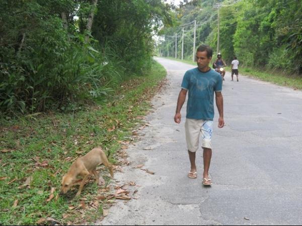 Cachorro de estimação achou corpo de dona de 14 anos morta em Santos, SP