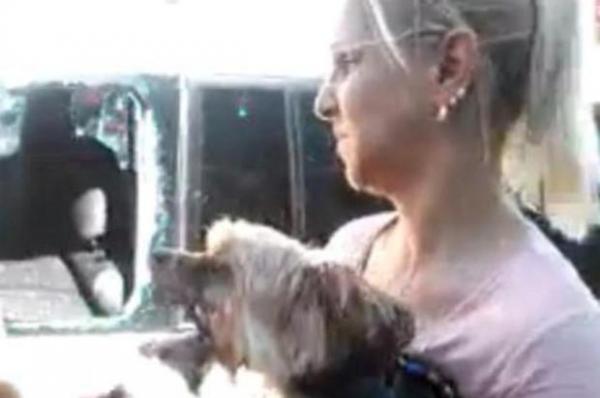 Moradores de Pelotas quebram vidro de carro para resgatar cachorro