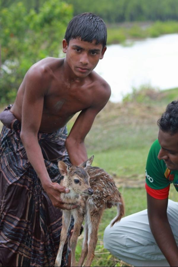 Menino arrisca a vida em enchente em Bangladesh para salvar filhote de cervo