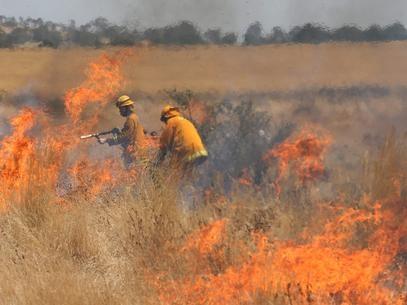 Incêndios na Austrália deixam várias casas destruídas