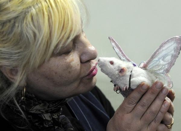 Propriet疵ios demonstram afeto com ratos de estima鈬o em Belarus