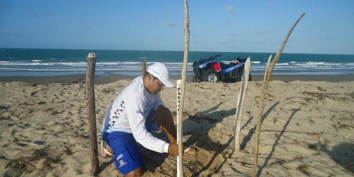 Projeto Biomade reforça o pedido de apoio para a comunidade e turistas sobre o trabalho de conservação das tartarugas marinhas, no litoral piauiense