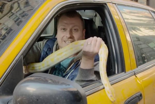 Taxista esconde cobra no carro e apavora passageiros em pegadinha