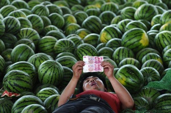 Deitado em melancias, vendedor observa