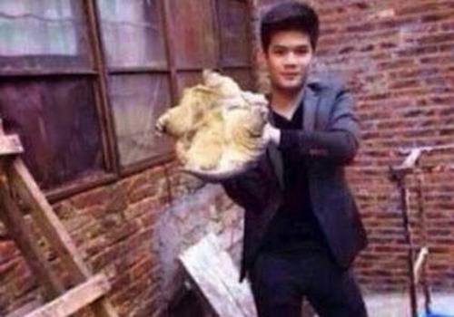 Chinês beija tartaruga e fica com sapão na boca
